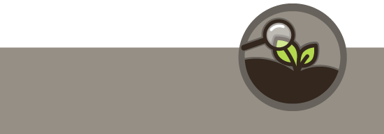 banner_tecnicos