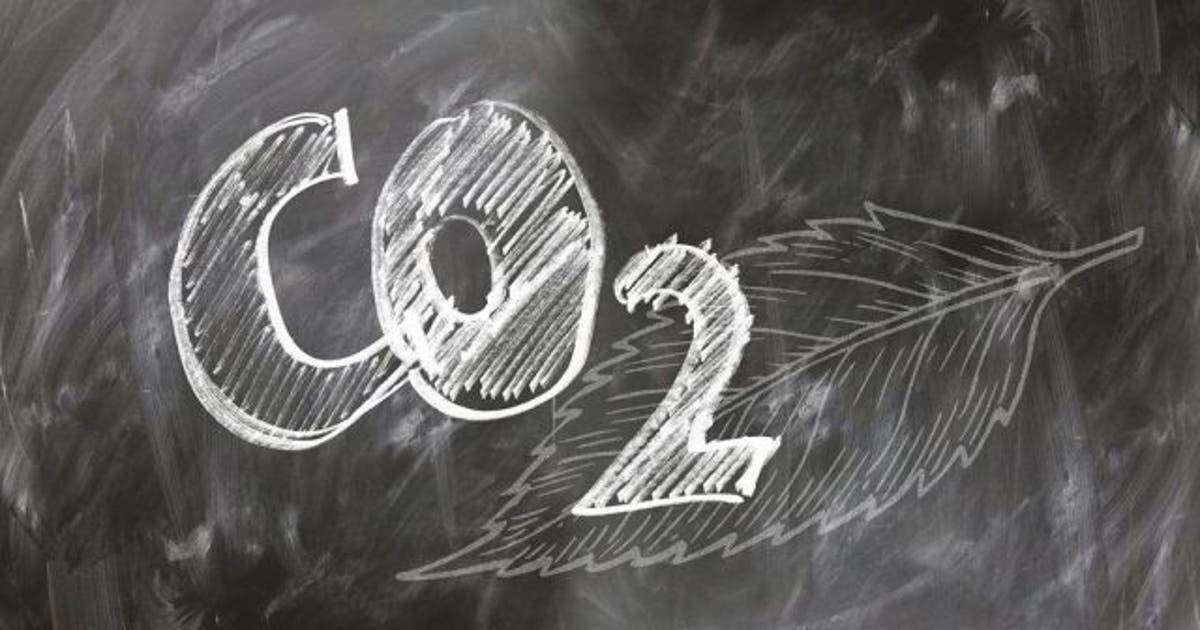 C02, efecto invernadero y fotosintesis